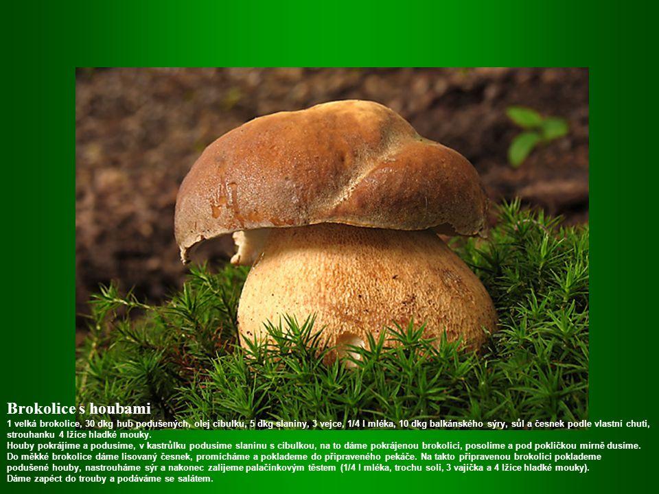 Houby vařené jako ovar 60 dkg malých hříbků nebo žampionů, 1 a půl vývaru z kostky, nastrouhaný křen, a máslo.