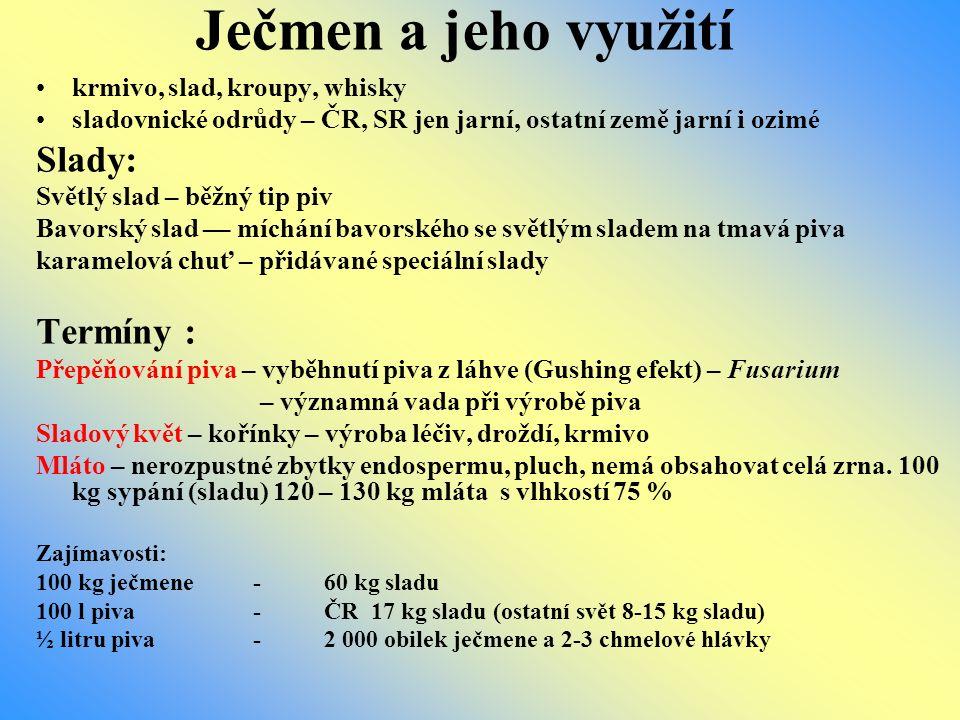 Ječmen a jeho využití krmivo, slad, kroupy, whisky sladovnické odrůdy – ČR, SR jen jarní, ostatní země jarní i ozimé Slady: Světlý slad – běžný tip pi