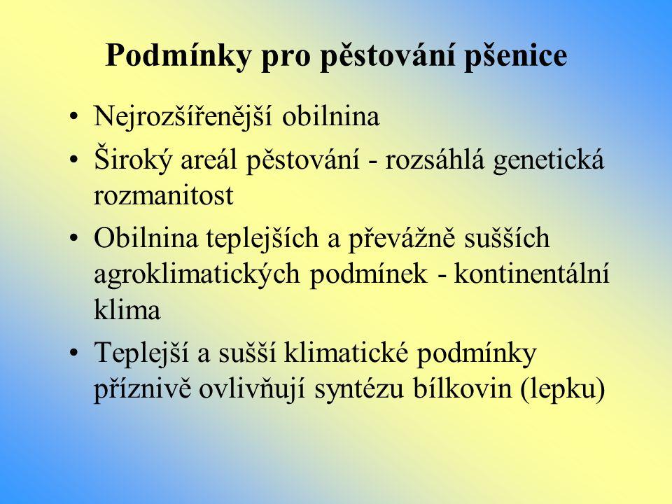 Pšeničné produkty Mouka - značení mouk: - V ČR hl.