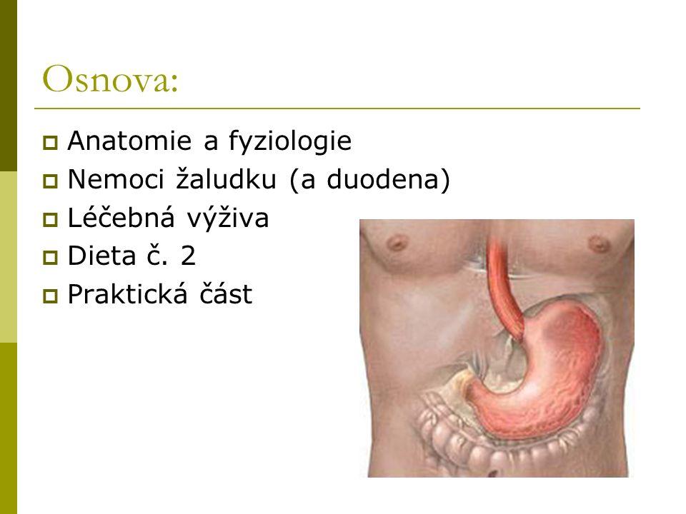 Osnova:  Anatomie a fyziologie  Nemoci žaludku (a duodena)  Léčebná výživa  Dieta č.