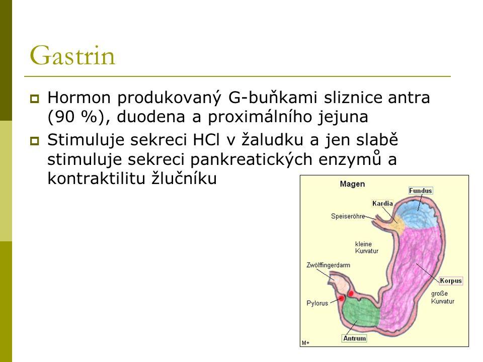 Gastrin  Hormon produkovaný G-buňkami sliznice antra (90 %), duodena a proximálního jejuna  Stimuluje sekreci HCl v žaludku a jen slabě stimuluje se