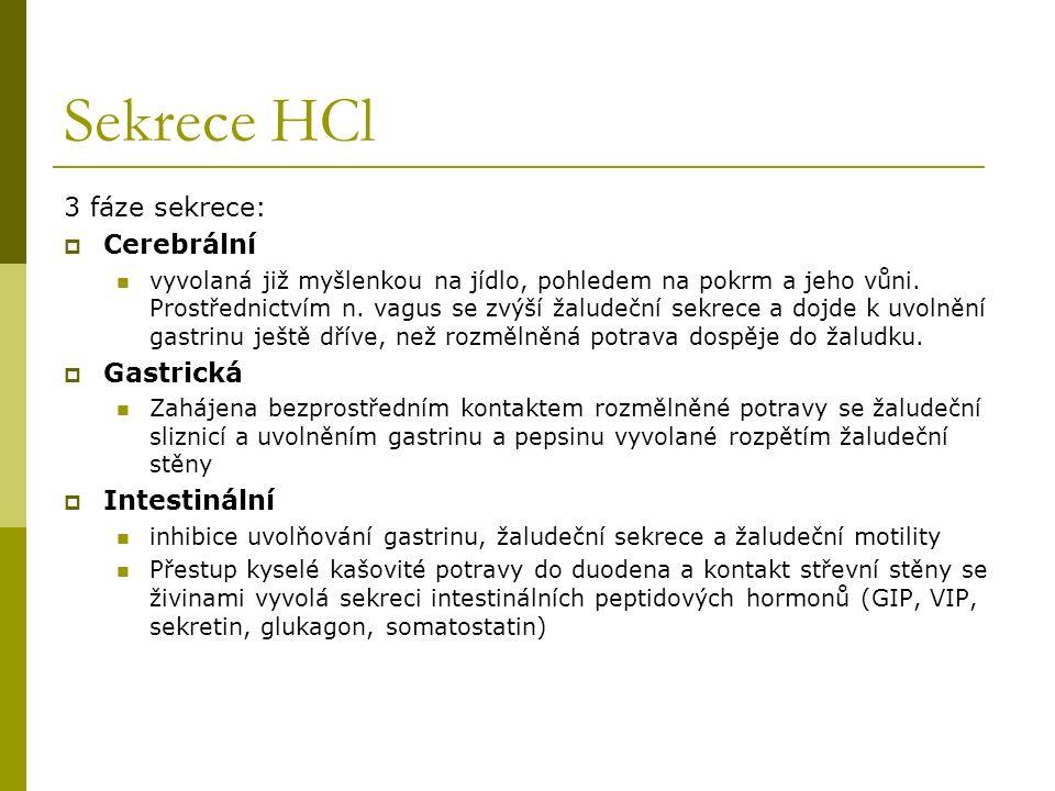 Sekrece HCl 3 fáze sekrece:  Cerebrální vyvolaná již myšlenkou na jídlo, pohledem na pokrm a jeho vůni. Prostřednictvím n. vagus se zvýší žaludeční s