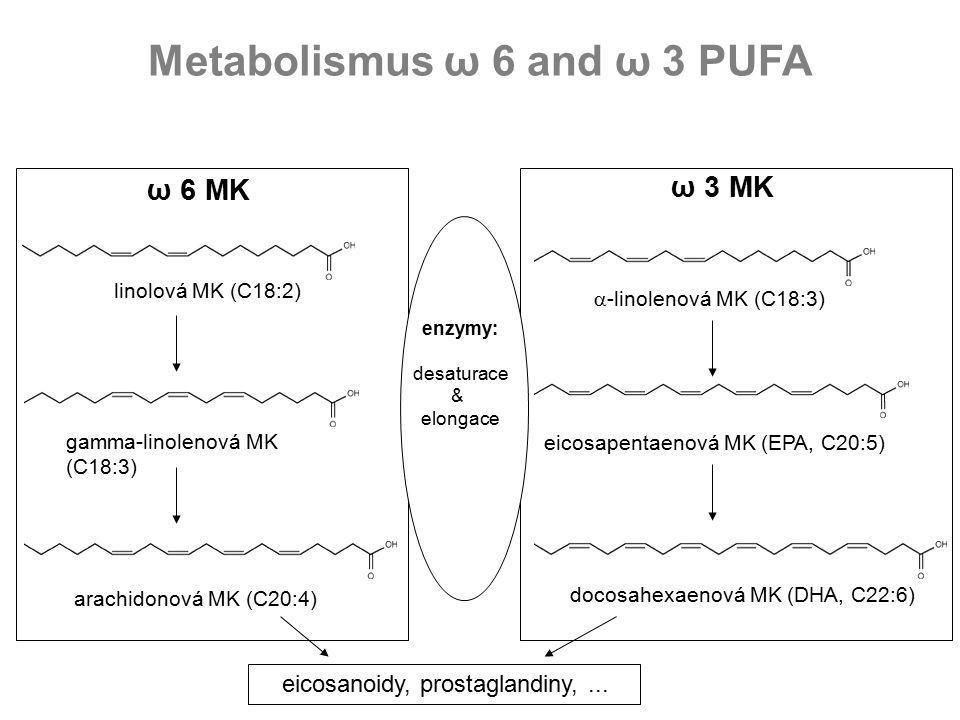 Metabolismus ω 6 and ω 3 PUFA linolová MK (C18:2)  -linolenová MK (C18:3) eicosapentaenová MK (EPA, C20:5) docosahexaenová MK (DHA, C22:6) gamma-linolenová MK (C18:3) arachidonová MK (C20:4) ω 6 MK ω 3 MK enzymy: desaturace & elongace eicosanoidy, prostaglandiny,...