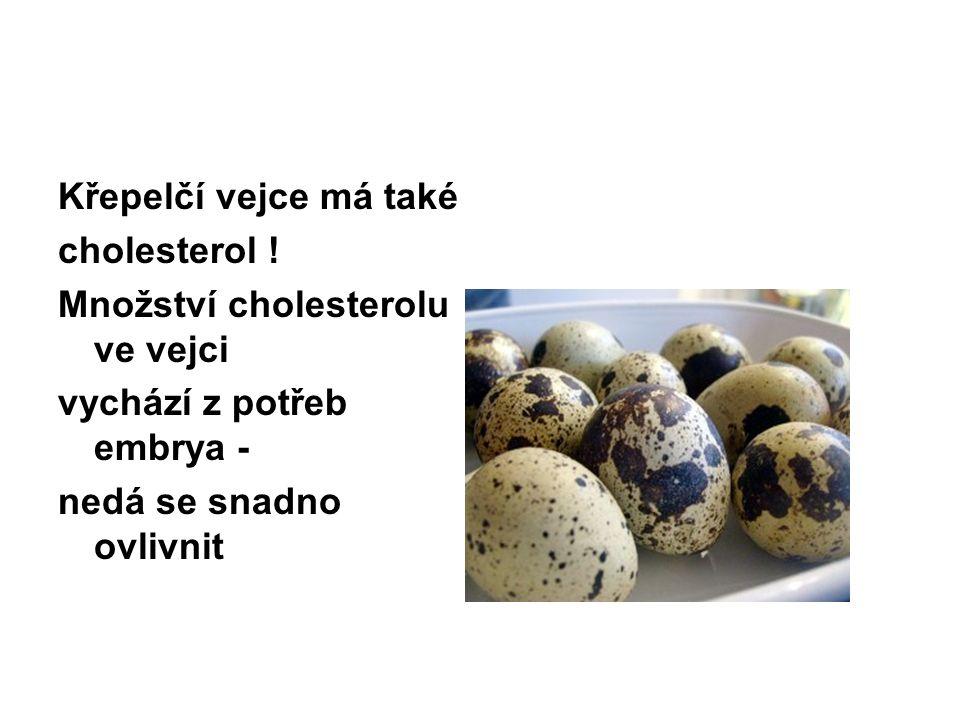 Křepelčí vejce má také cholesterol .