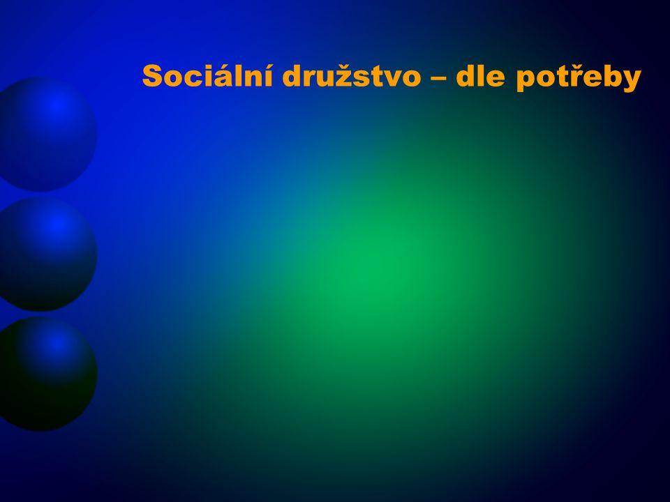 Sociální družstvo – dle potřeby