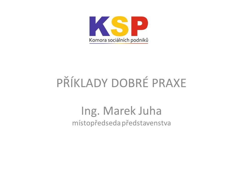 PŘÍKLADY DOBRÉ PRAXE Ing. Marek Juha místopředseda představenstva