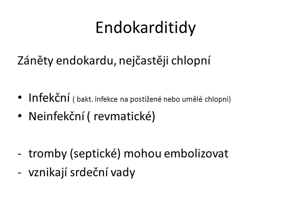 Endokarditidy Záněty endokardu, nejčastěji chlopní Infekční ( bakt.