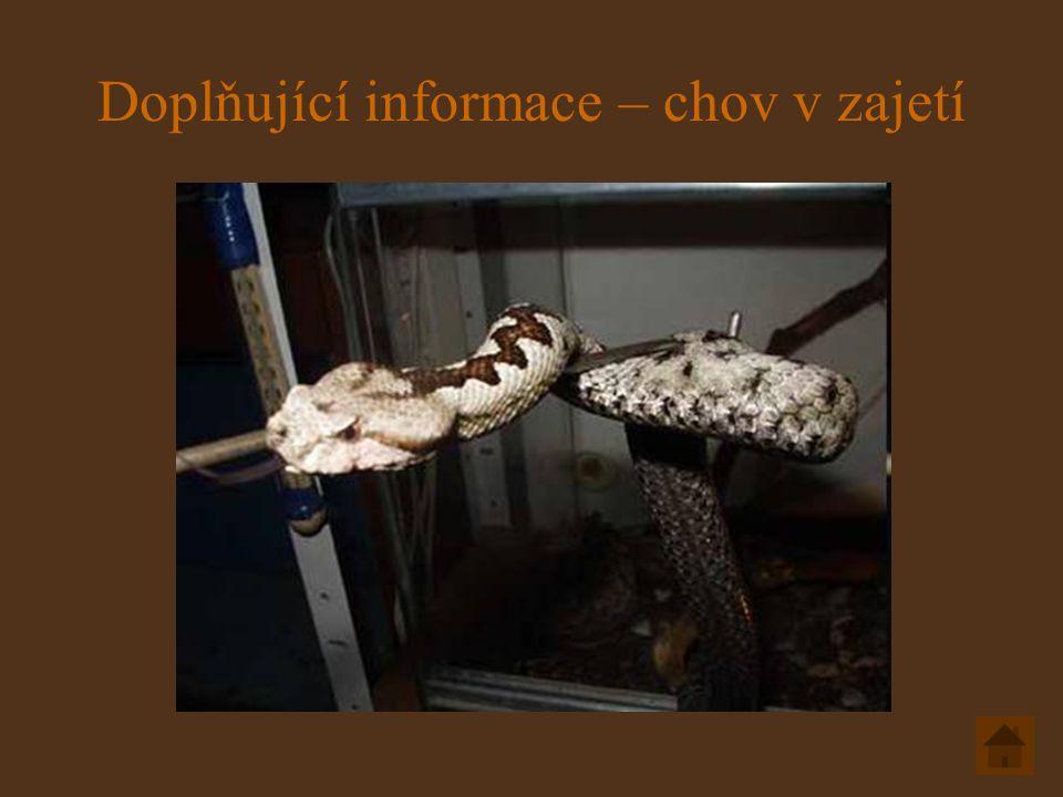Doplňující informace – chov v zajetí