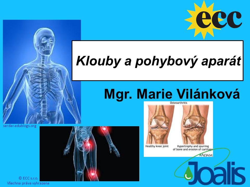 Klouby a pohybový aparát.Bolesti kloubů, artróza a artritida, onemocnění dnou, osteoporóza.
