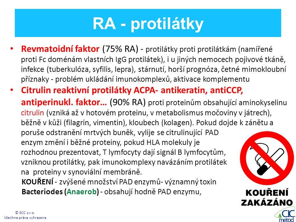 RA - protilátky Revmatoidní faktor (75% RA) - protilátky proti protilátkám (namířené proti Fc doménám vlastních IgG protilátek), i u jiných nemocech pojivové tkáně, infekce (tuberkulóza, syfilis, lepra), stárnutí, horší prognóza, četné mimokloubní příznaky - problém ukládání imunokomplexů, aktivace komplementu Citrulin reaktivní protilátky ACPA- antikeratin, antiCCP, antiperinukl.