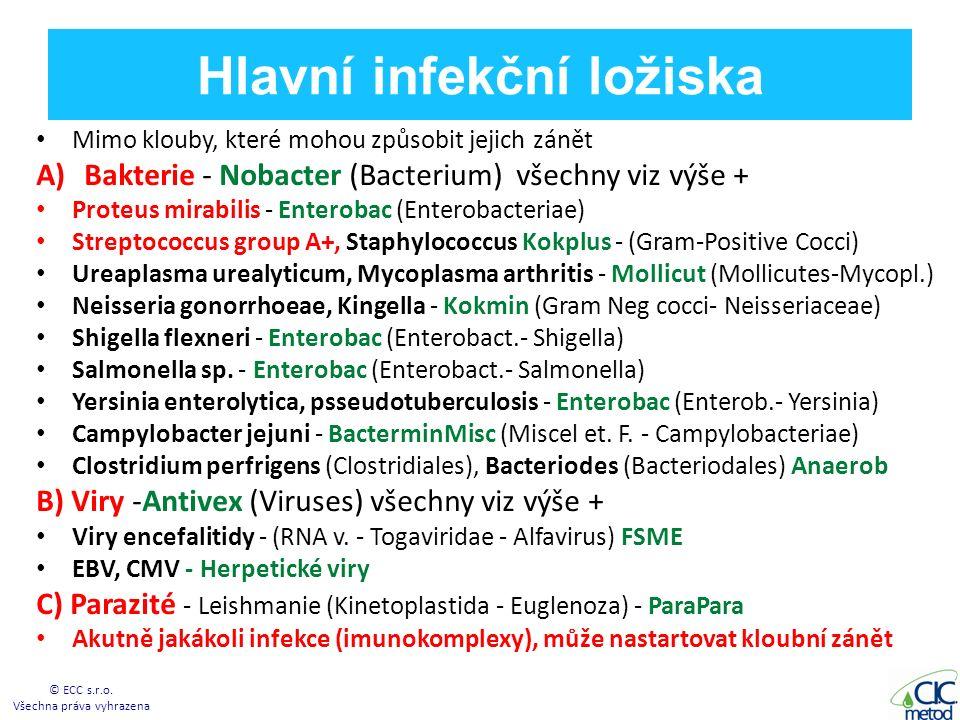 Hlavní infekční ložiska Mimo klouby, které mohou způsobit jejich zánět A)Bakterie - Nobacter (Bacterium) všechny viz výše + Proteus mirabilis - Enterobac (Enterobacteriae) Streptococcus group A+, Staphylococcus Kokplus - (Gram-Positive Cocci) Ureaplasma urealyticum, Mycoplasma arthritis - Mollicut (Mollicutes-Mycopl.) Neisseria gonorrhoeae, Kingella - Kokmin (Gram Neg cocci- Neisseriaceae) Shigella flexneri - Enterobac (Enterobact.- Shigella) Salmonella sp.