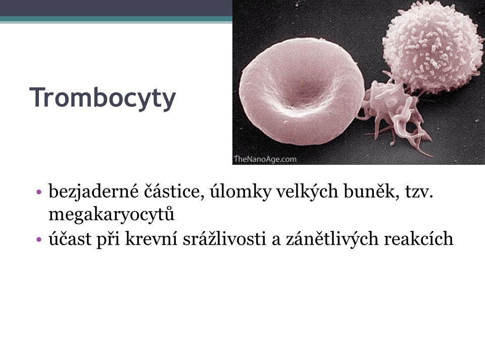 Trombocyty bezjaderné částice, úlomky velkých buněk, tzv.