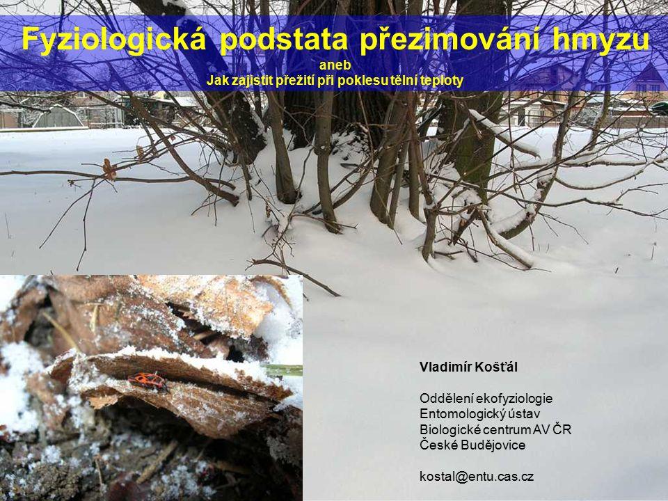 Fyziologická podstata přezimování hmyzu aneb Jak zajistit přežití při poklesu tělní teploty Vladimír Košťál Oddělení ekofyziologie Entomologický ústav