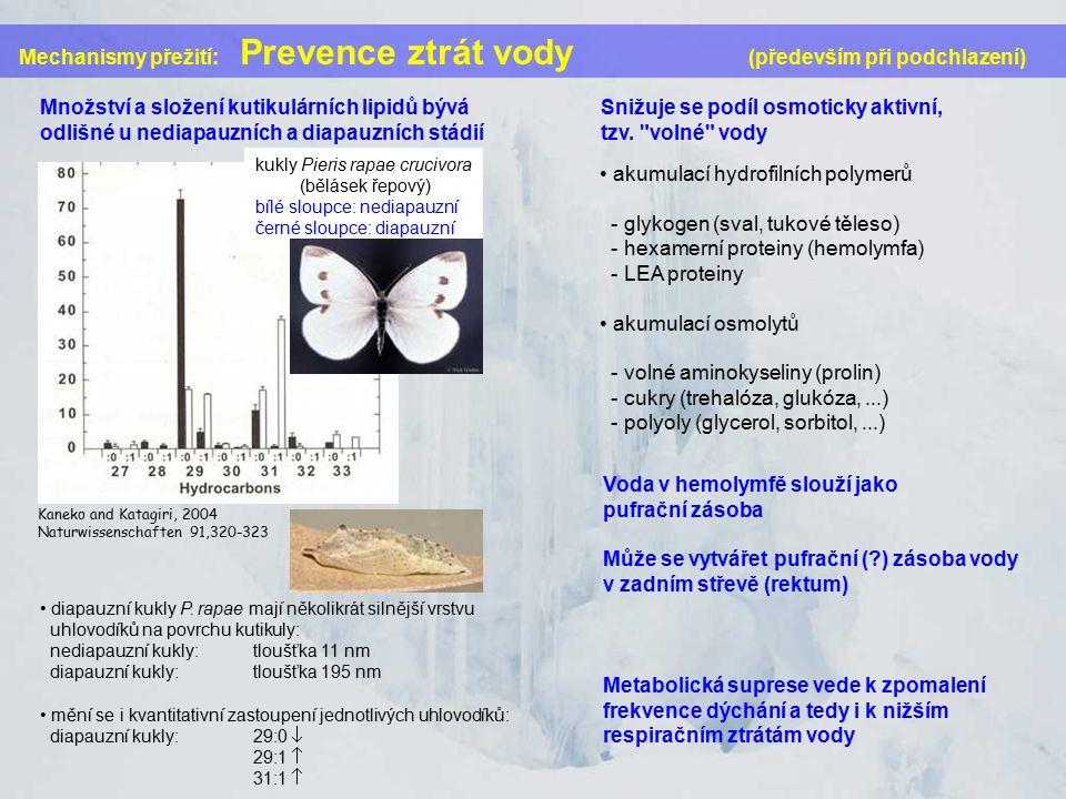 Mechanismy přežití: Prevence ztrát vody (především při podchlazení) Množství a složení kutikulárních lipidů bývá odlišné u nediapauzních a diapauzních