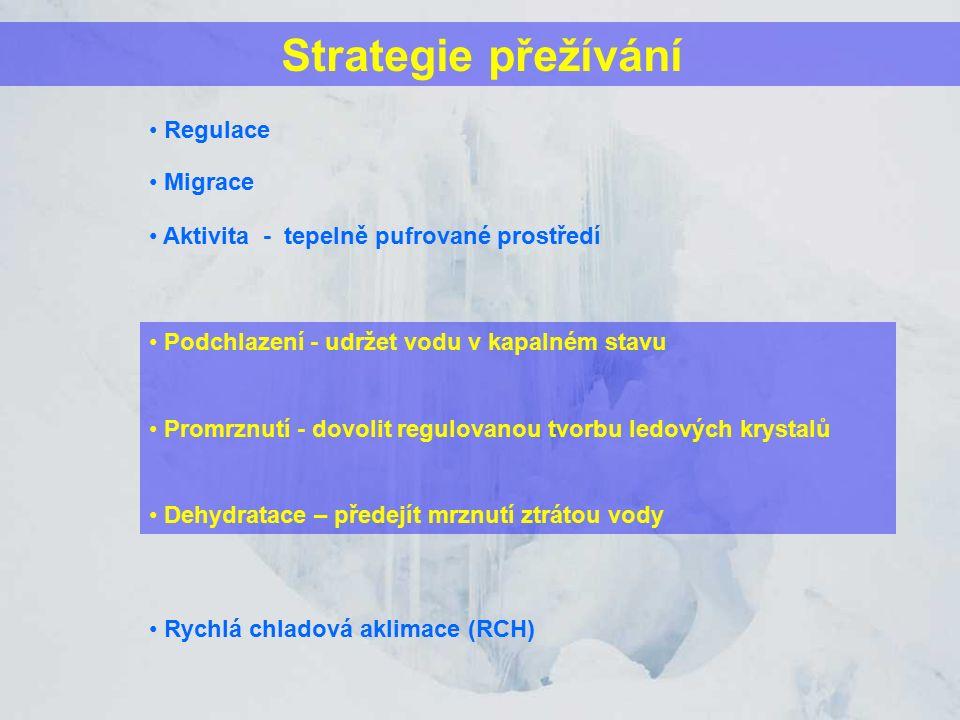 Strategie přežívání Podchlazení - udržet vodu v kapalném stavu Promrznutí - dovolit regulovanou tvorbu ledových krystalů Dehydratace – předejít mrznutí ztrátou vody Migrace Rychlá chladová aklimace (RCH) Regulace Aktivita - tepelně pufrované prostředí