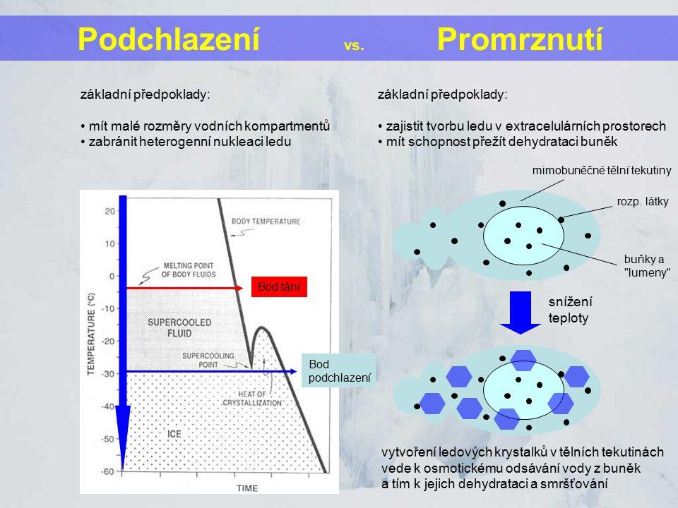 snížení teploty mimobuněčné tělní tekutiny rozp. látky buňky a