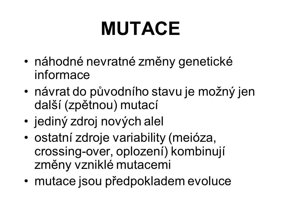 MUTACE náhodné nevratné změny genetické informace návrat do původního stavu je možný jen další (zpětnou) mutací jediný zdroj nových alel ostatní zdroje variability (meióza, crossing-over, oplození) kombinují změny vzniklé mutacemi mutace jsou předpokladem evoluce