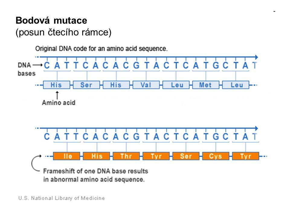 Bodová mutace (posun čtecího rámce)