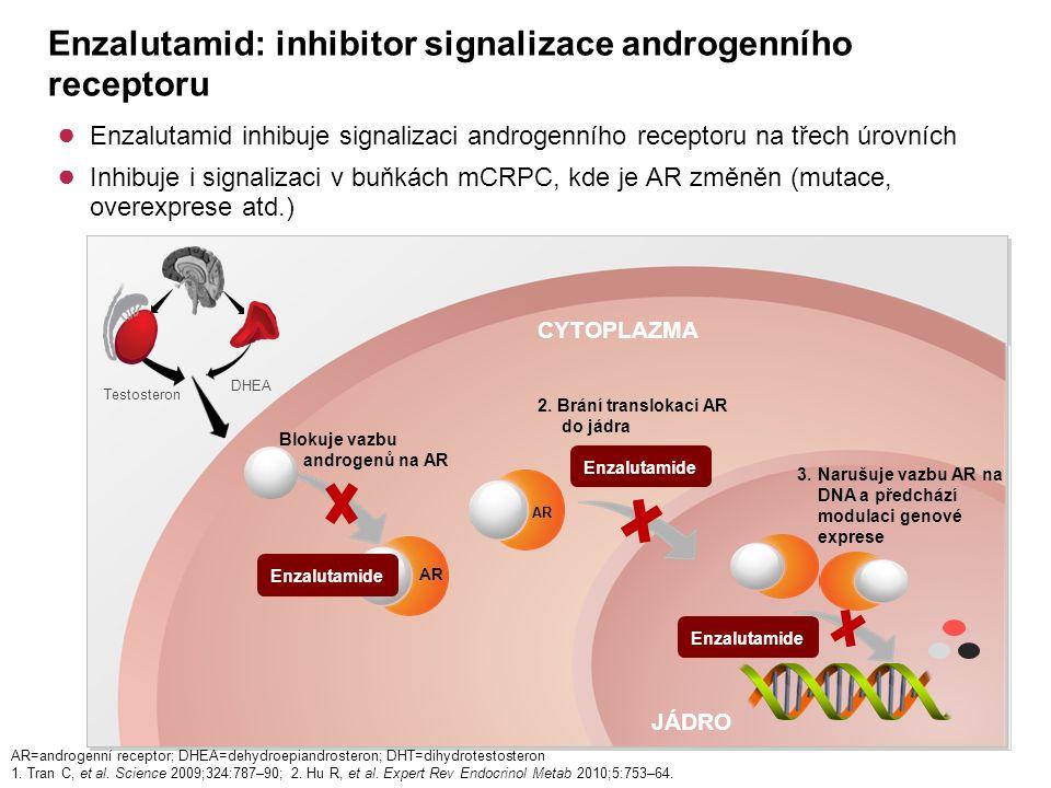 Enzalutamid: inhibitor signalizace androgenního receptoru ● Enzalutamid inhibuje signalizaci androgenního receptoru na třech úrovních ● Inhibuje i signalizaci v buňkách mCRPC, kde je AR změněn (mutace, overexprese atd.) JÁDRO CYTOPLAZMA Enzalutamide AR Enzalutamide Blokuje vazbu androgenů na AR 2.