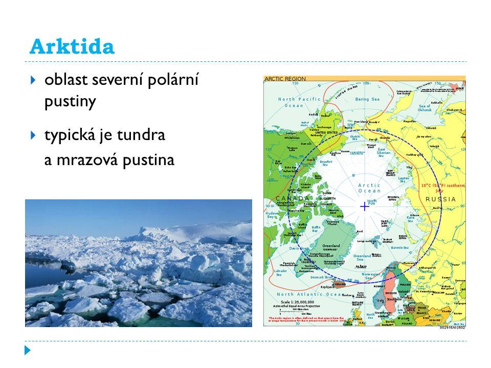 Arktida  oblast severní polární pustiny  typická je tundra a mrazová pustina