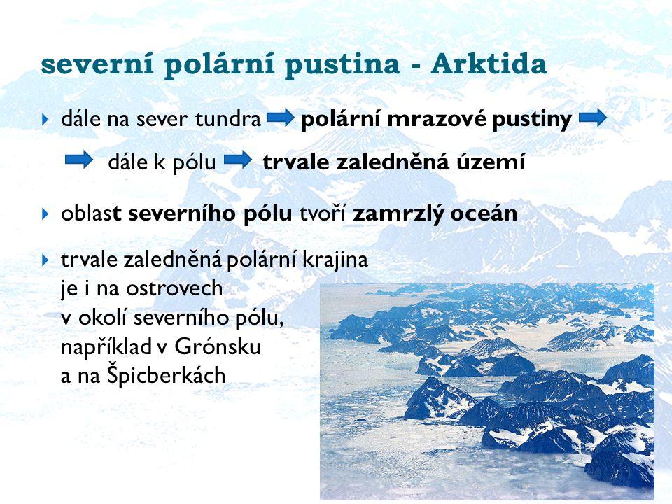 severní polární pustina - Arktida  dále na sever tundra polární mrazové pustiny dále k pólu trvale zaledněná území  oblast severního pólu tvoří zamrzlý oceán  trvale zaledněná polární krajina je i na ostrovech v okolí severního pólu, například v Grónsku a na Špicberkách