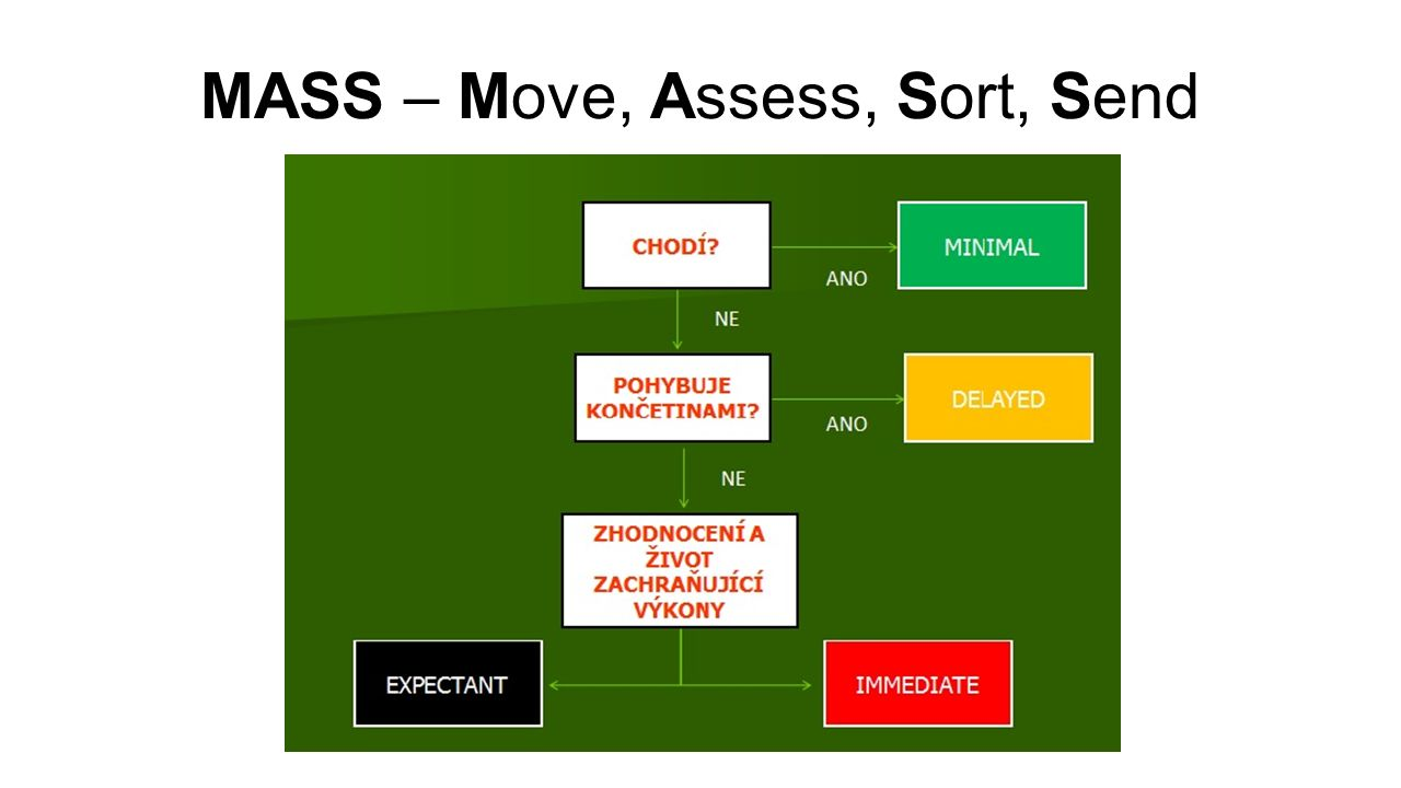 MASS – Move, Assess, Sort, Send