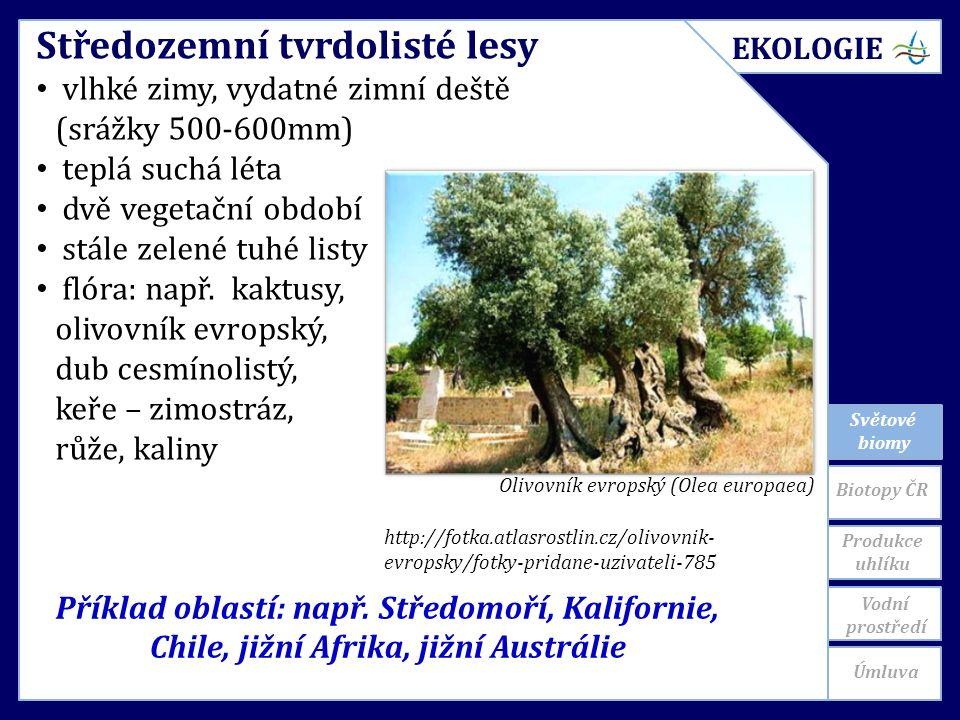 Světové biomy Příklad oblastí: např.