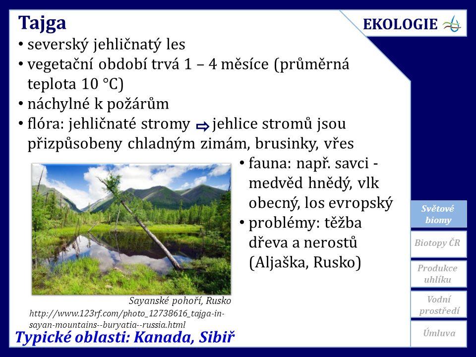 Světové biomy Typické oblasti: Kanada, Sibiř Tajga severský jehličnatý les vegetační období trvá 1 – 4 měsíce (průměrná teplota 10 °C) náchylné k požárům flóra: jehličnaté stromy jehlice stromů jsou přizpůsobeny chladným zimám, brusinky, vřes http://www.123rf.com/photo_12738616_tajga-in- sayan-mountains--buryatia--russia.html Sayanské pohoří, Rusko fauna: např.