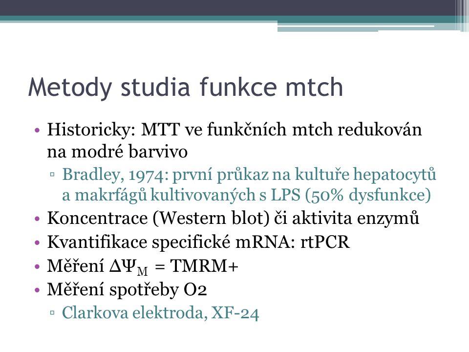 Metody studia funkce mtch Historicky: MTT ve funkčních mtch redukován na modré barvivo ▫Bradley, 1974: první průkaz na kultuře hepatocytů a makrfágů k