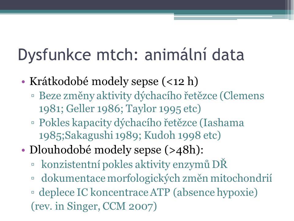Dysfunkce mtch: animální data Krátkodobé modely sepse (<12 h) ▫Beze změny aktivity dýchacího řetězce (Clemens 1981; Geller 1986; Taylor 1995 etc) ▫Pok