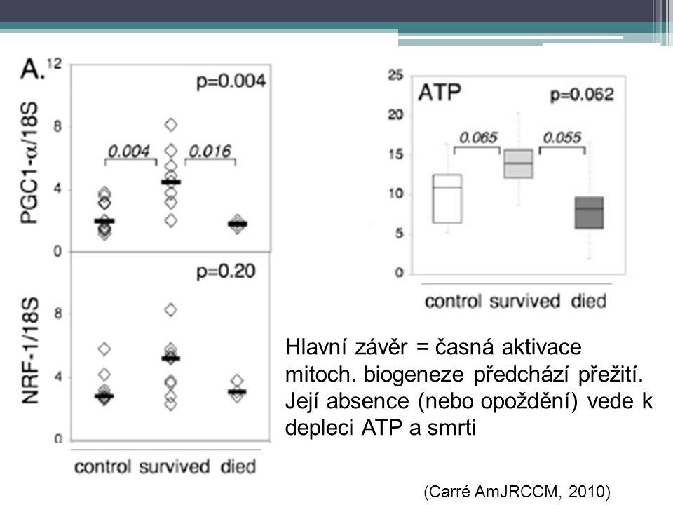 Hlavní závěr = časná aktivace mitoch. biogeneze předchází přežití. Její absence (nebo opoždění) vede k depleci ATP a smrti (Carré AmJRCCM, 2010)