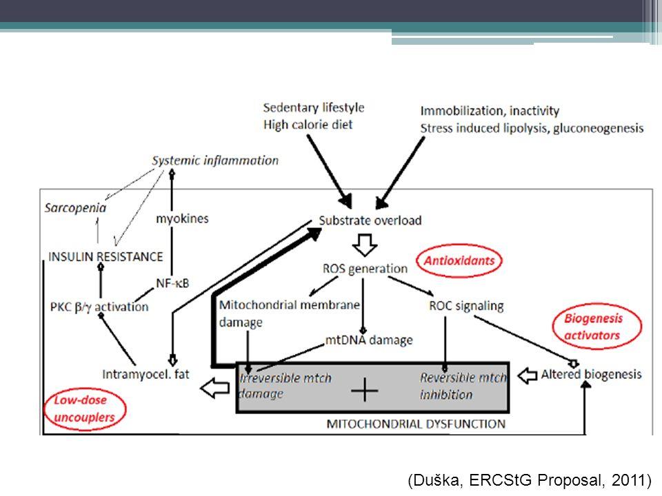 ( (Duška, ERCStG Proposal, 2011)