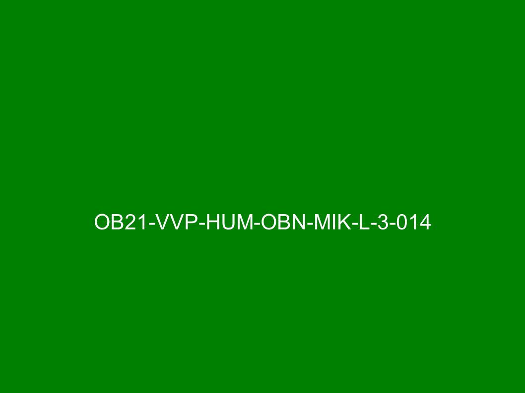 OB21-VVP-HUM-OBN-MIK-L-3-014
