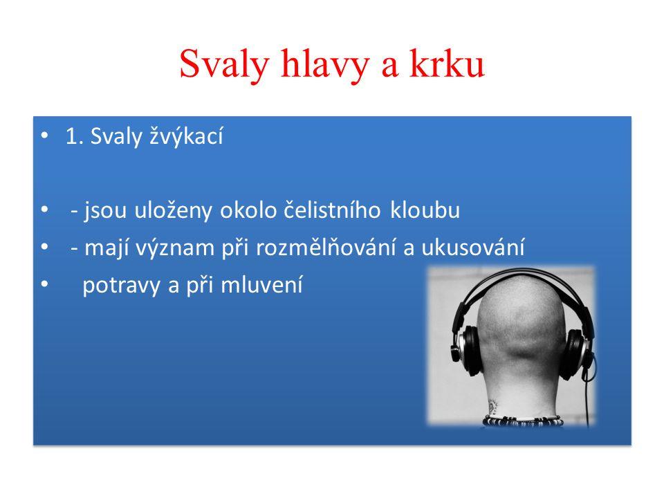 Použitá literatura, zdroje  LUDĚK J.DOBROURUKA, BLANKA VACKOVÁ, REGINA KRÁLOVÁ, PAVEL BARTOŠ.