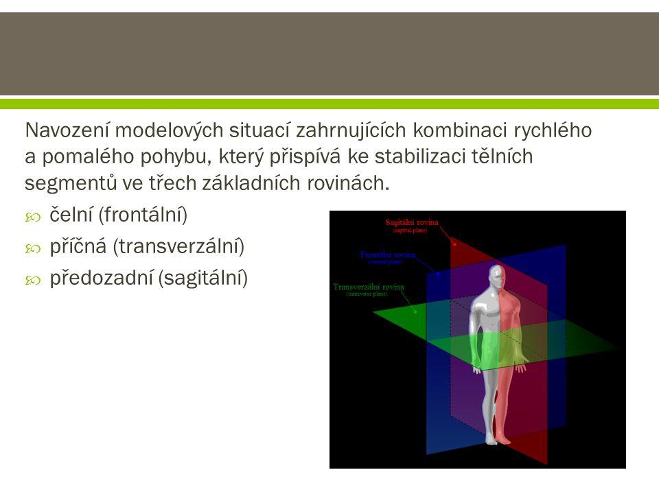 Navození modelových situací zahrnujících kombinaci rychlého a pomalého pohybu, který přispívá ke stabilizaci tělních segmentů ve třech základních rovi