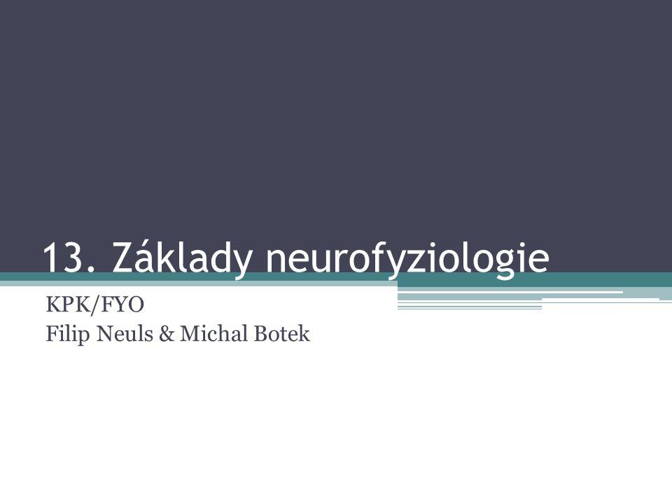 13. Základy neurofyziologie KPK/FYO Filip Neuls & Michal Botek