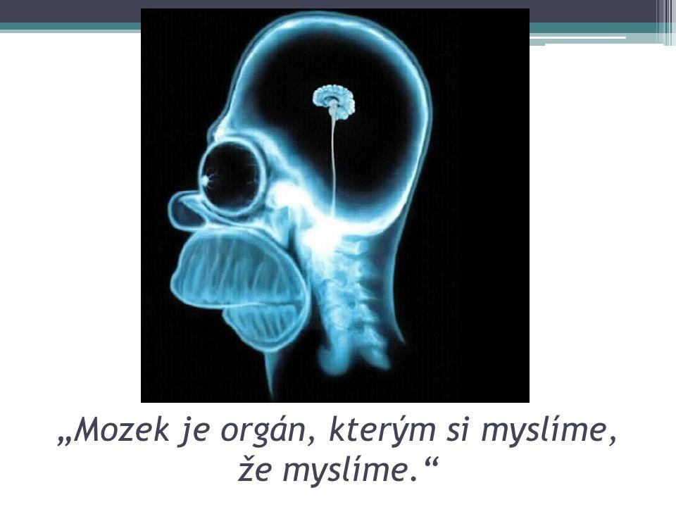 """""""Mozek je orgán, kterým si myslíme, že myslíme."""