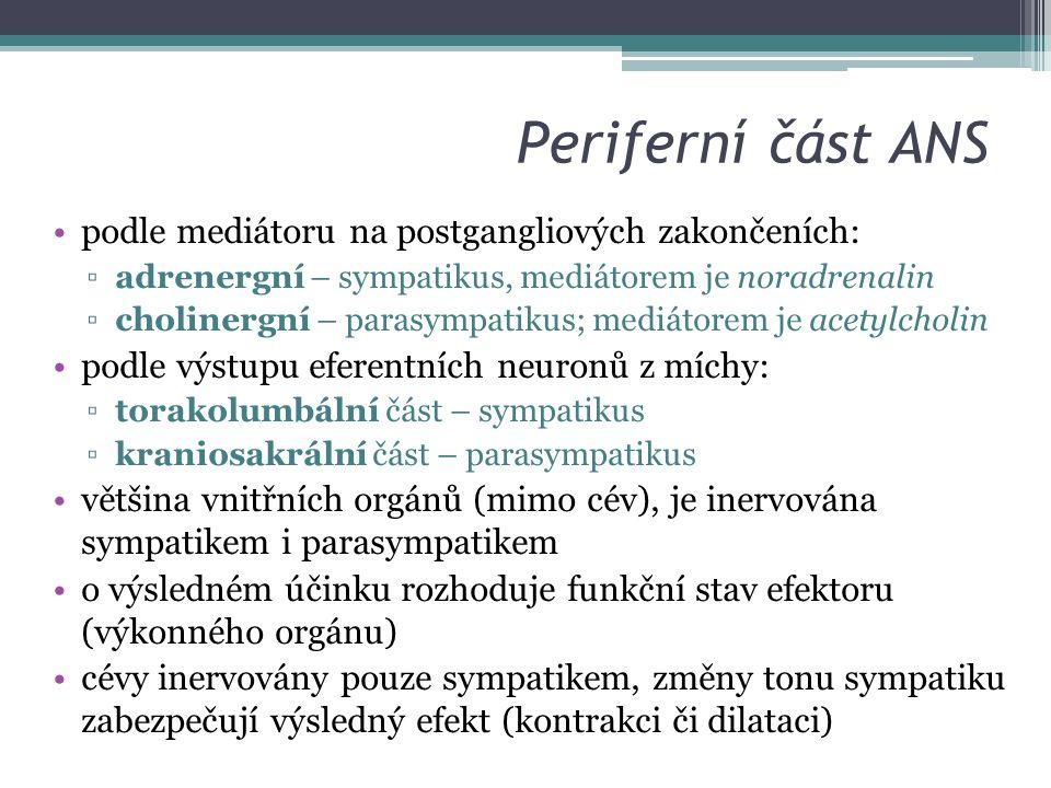 Periferní část ANS podle mediátoru na postgangliových zakončeních: ▫adrenergní – sympatikus, mediátorem je noradrenalin ▫cholinergní – parasympatikus; mediátorem je acetylcholin podle výstupu eferentních neuronů z míchy: ▫torakolumbální část – sympatikus ▫kraniosakrální část – parasympatikus většina vnitřních orgánů (mimo cév), je inervována sympatikem i parasympatikem o výsledném účinku rozhoduje funkční stav efektoru (výkonného orgánu) cévy inervovány pouze sympatikem, změny tonu sympatiku zabezpečují výsledný efekt (kontrakci či dilataci)