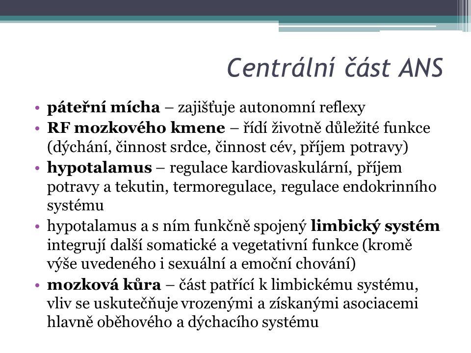 Centrální část ANS páteřní mícha – zajišťuje autonomní reflexy RF mozkového kmene – řídí životně důležité funkce (dýchání, činnost srdce, činnost cév, příjem potravy) hypotalamus – regulace kardiovaskulární, příjem potravy a tekutin, termoregulace, regulace endokrinního systému hypotalamus a s ním funkčně spojený limbický systém integrují další somatické a vegetativní funkce (kromě výše uvedeného i sexuální a emoční chování) mozková kůra – část patřící k limbickému systému, vliv se uskutečňuje vrozenými a získanými asociacemi hlavně oběhového a dýchacího systému