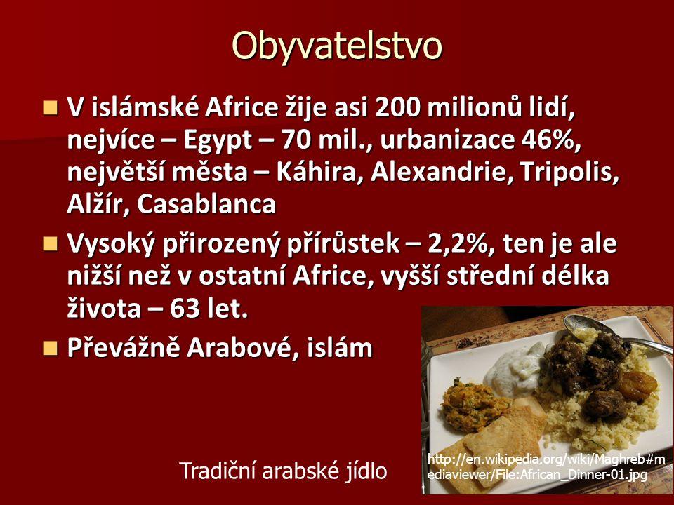 Obyvatelstvo V islámské Africe žije asi 200 milionů lidí, nejvíce – Egypt – 70 mil., urbanizace 46%, největší města – Káhira, Alexandrie, Tripolis, Alžír, Casablanca V islámské Africe žije asi 200 milionů lidí, nejvíce – Egypt – 70 mil., urbanizace 46%, největší města – Káhira, Alexandrie, Tripolis, Alžír, Casablanca Vysoký přirozený přírůstek – 2,2%, ten je ale nižší než v ostatní Africe, vyšší střední délka života – 63 let.