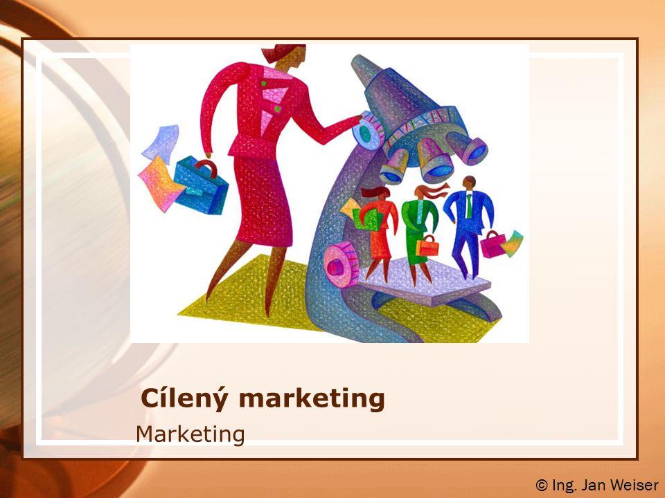 Koncentrovaný marketing vychází z filozofie, že je lepší mít velký podíl na malém trhu, než malý podíl na velkém trhu soustředěním na jeden tržní segment může společnost dosáhnout vysokých úspor vlivem specializace produkce, jednodušší distribuce a levnější komunikace je nutné zvážit, zda potenciál segmentu je takový, že dokáže pro společnost přinést žádaný prodej pro vytvoření zisku