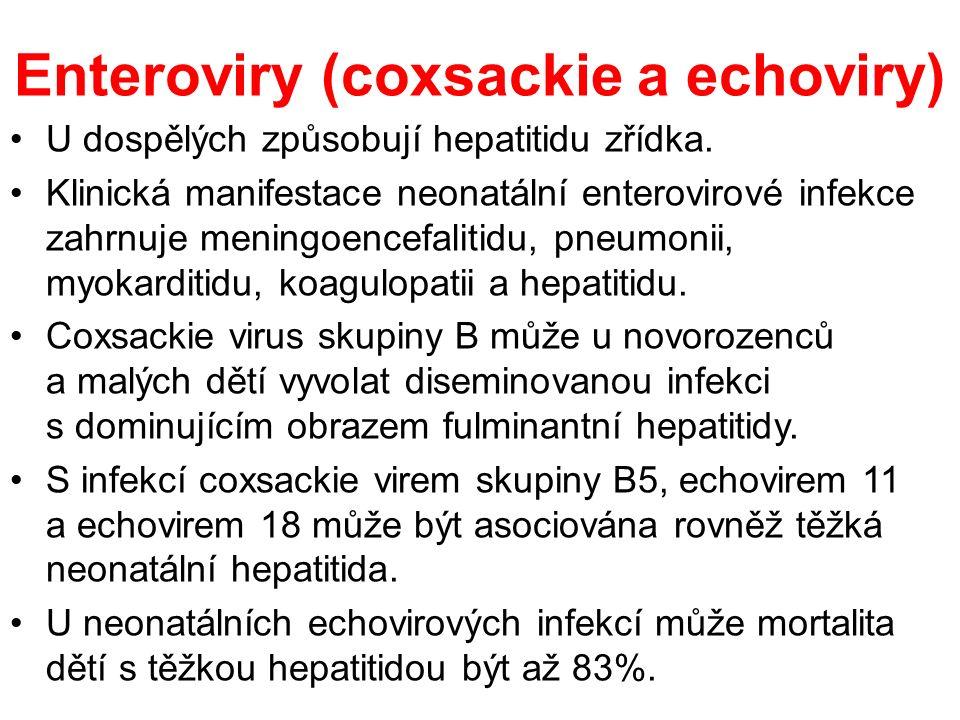 Enteroviry (coxsackie a echoviry) U dospělých způsobují hepatitidu zřídka.
