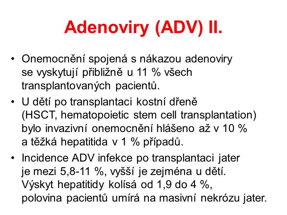 Adenoviry (ADV) II.