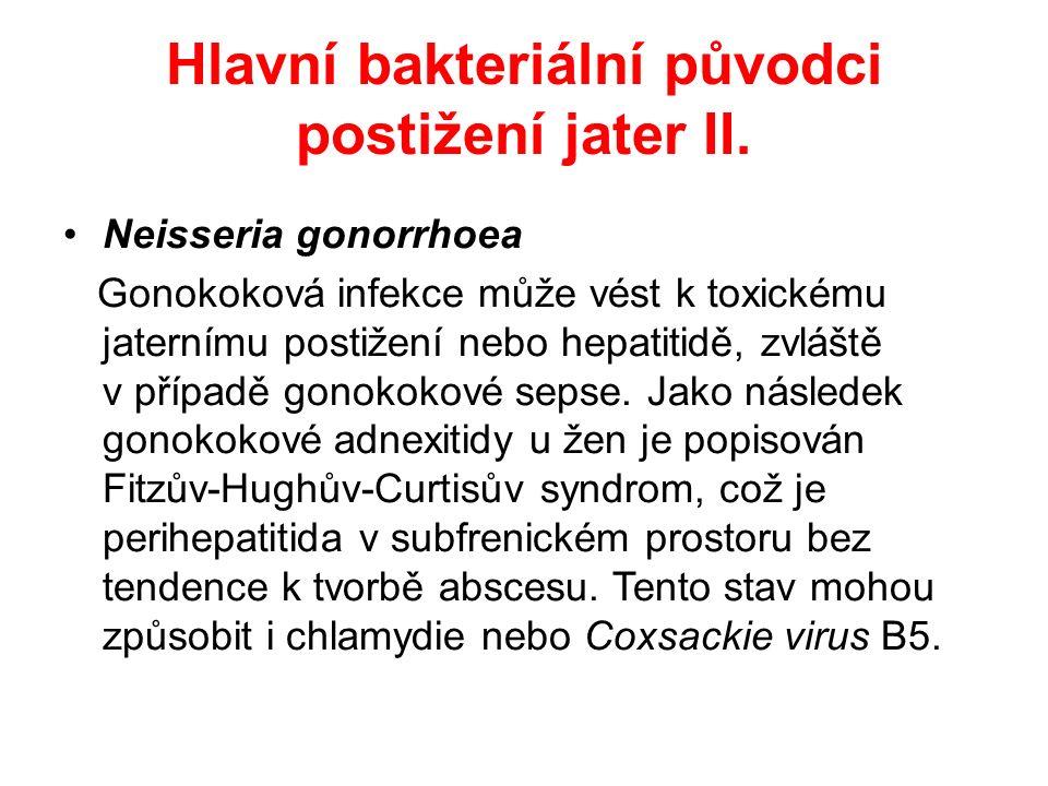 Hlavní bakteriální původci postižení jater III.