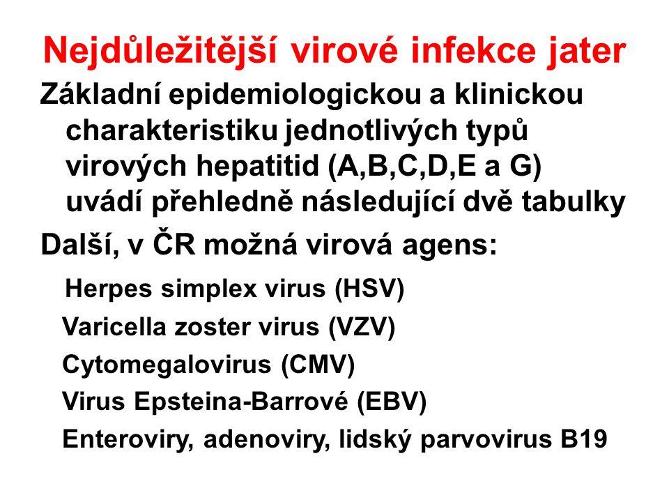 Nejdůležitější virové infekce jater Základní epidemiologickou a klinickou charakteristiku jednotlivých typů virových hepatitid (A,B,C,D,E a G) uvádí přehledně následující dvě tabulky Další, v ČR možná virová agens: Herpes simplex virus (HSV) Varicella zoster virus (VZV) Cytomegalovirus (CMV) Virus Epsteina-Barrové (EBV) Enteroviry, adenoviry, lidský parvovirus B19