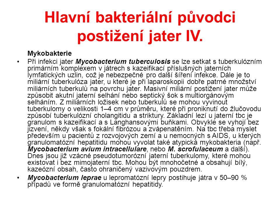 Hlavní bakteriální původci postižení jater IV.