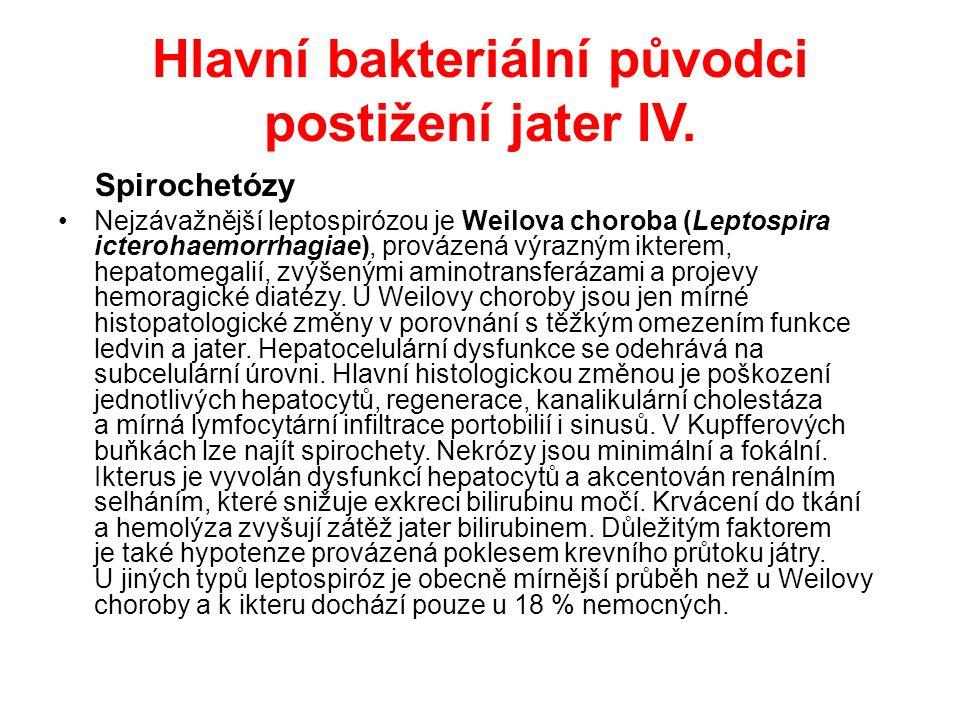 Hlavní bakteriální původci postižení jater V.