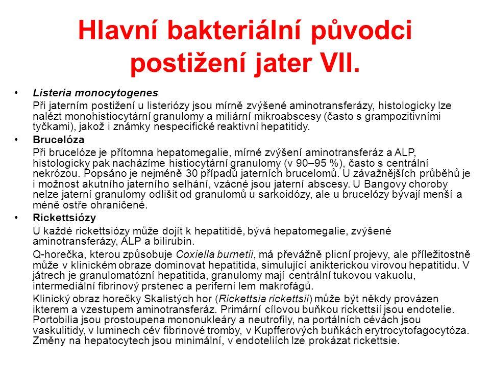 Hlavní bakteriální původci postižení jater VIII.
