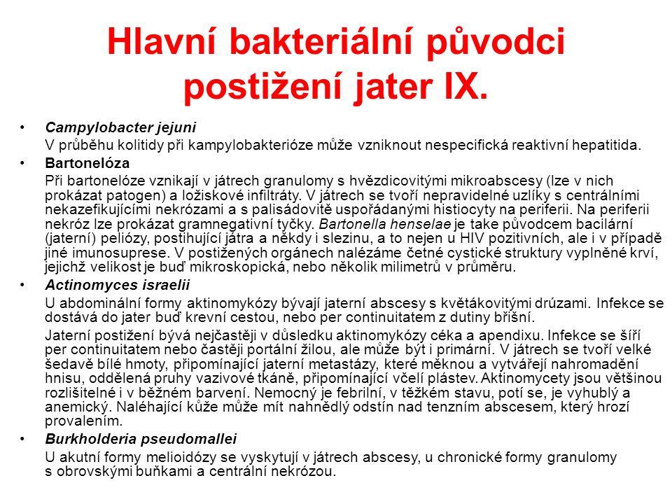 Hlavní bakteriální původci postižení jater IX.
