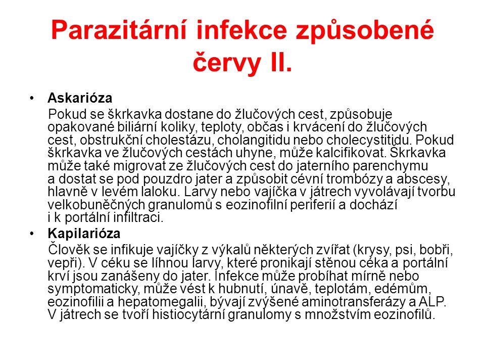 Parazitární infekce způsobené červy III.